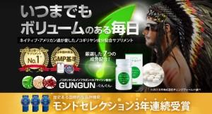 gungun-suppli
